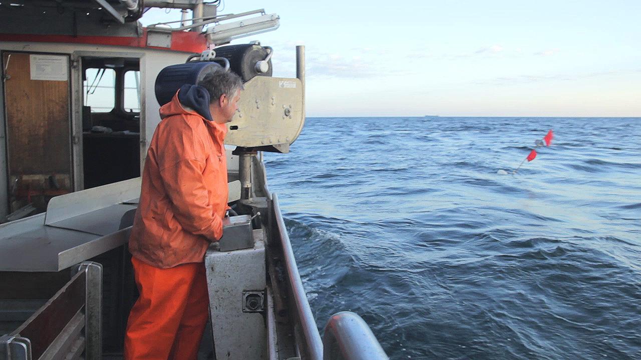 Der Fischer aus Rerik dokumentation